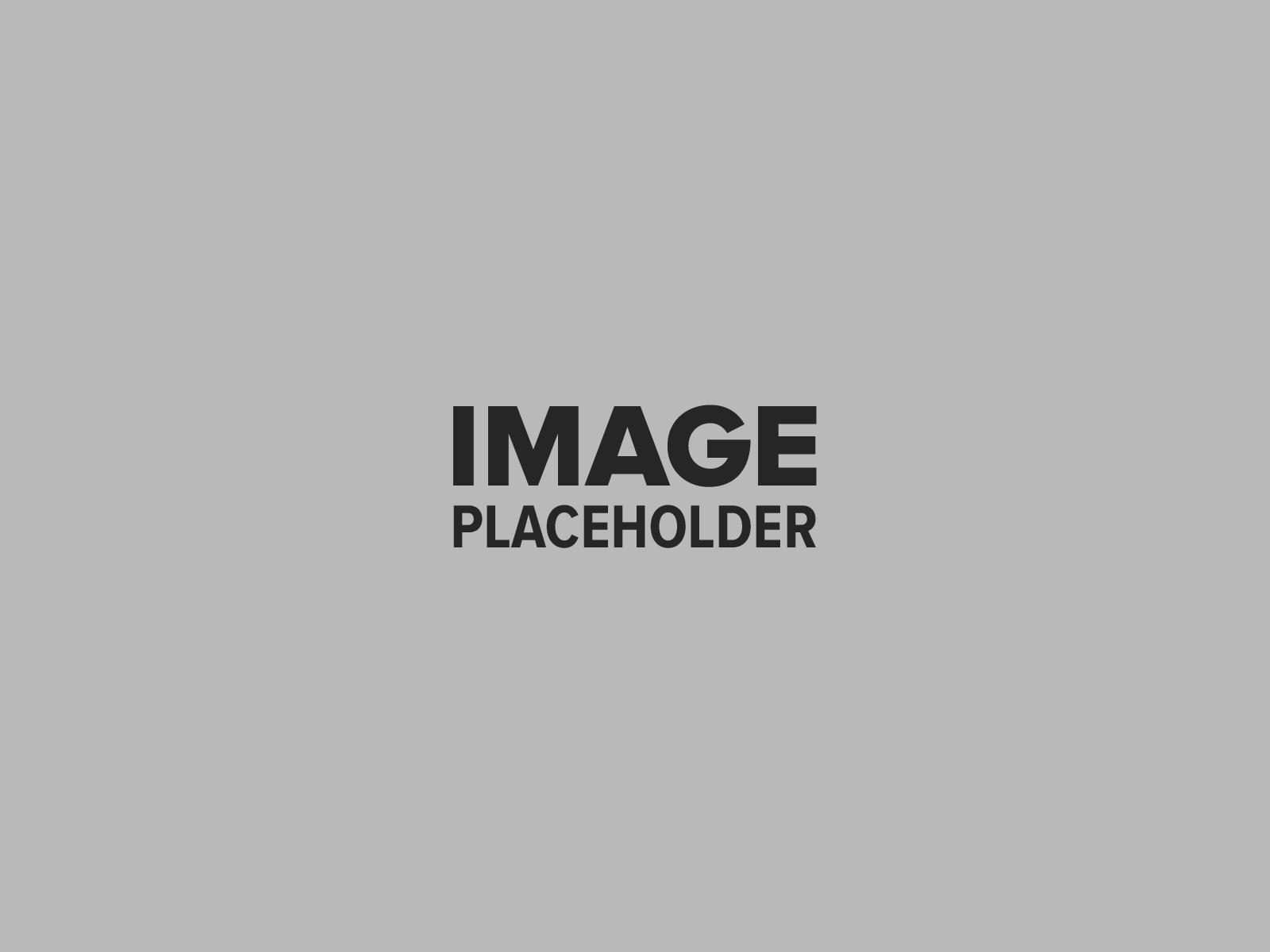pojo-placeholder-5